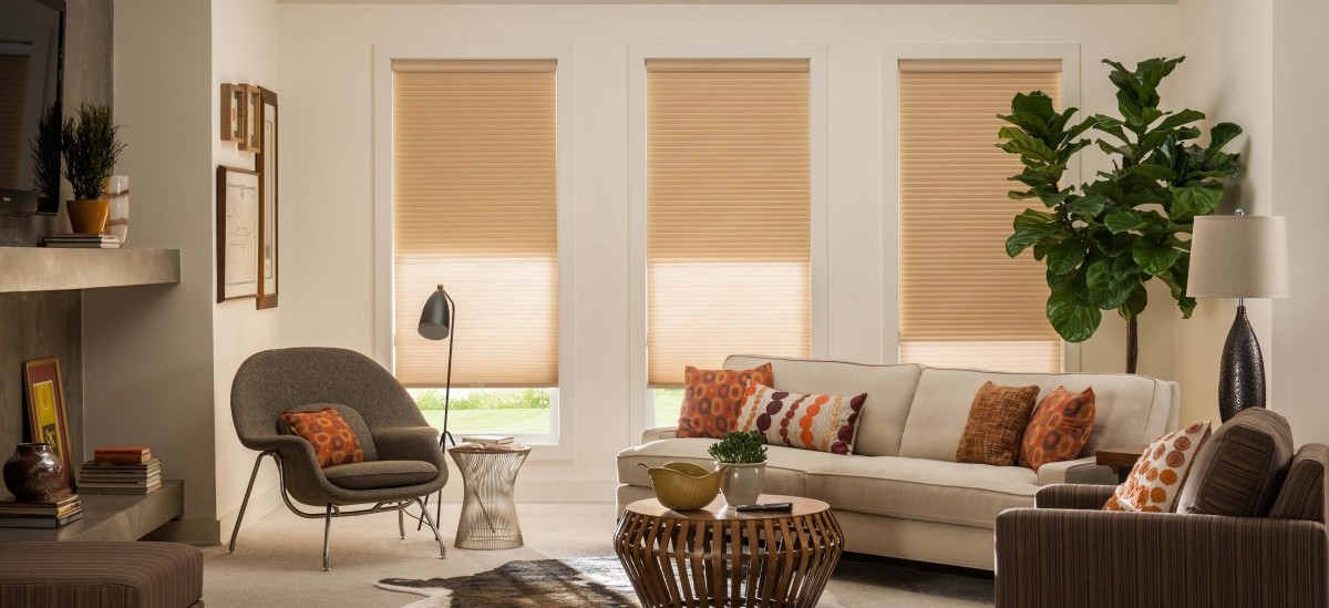 Honeycomb Shades Alta Window Fashions